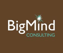 BigMind Consulting Home Page